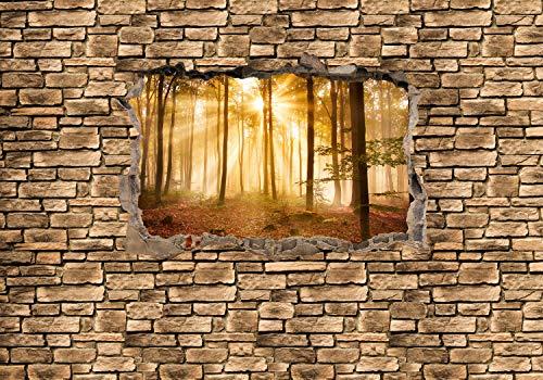 wandmotiv24 Fototapete 3D Wald am Morgen - Steinmauer XL 350 x 245 cm - 7 Teile Fototapeten, Wandbild, Motivtapeten, Vlies-Tapeten 3D-Optik, Wandbruch, Landschaft M0661