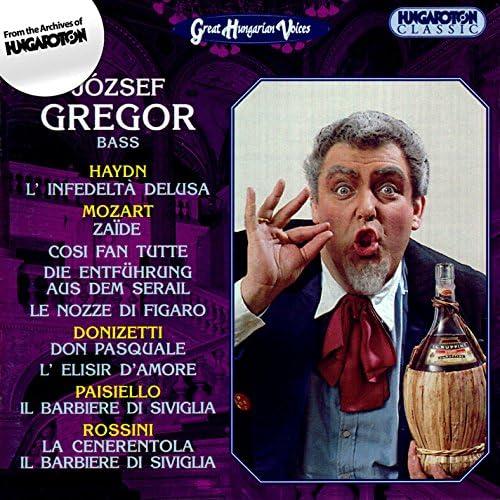 Jozsef Gregor