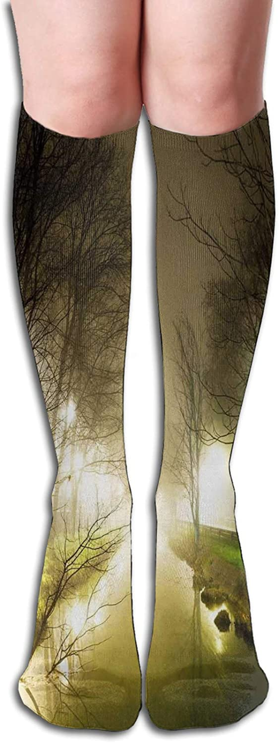 Compression High Socks-Water Channel Foggy Weather Trees Grass City Street At Winter Night Mystery Best for Running,Athletic,Hiking,Travel,Flight