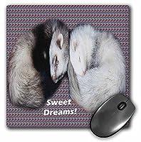 3dRose LLC 8 x 8 x 0.25インチ スリーピングフェレット マウスパッド (mp_17286_1)