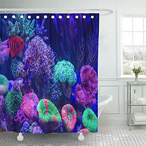Searster$ Shower Curtain Duschvorhang Blauer Tier-Clownfisch als bekannter Anemonenfisch Lange Polypen Steinkoralle als solche Fackel Braun Aquarium Duschvorhang,72X72 In