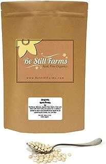 Be Still Farms Organic Navy Beans (1lb) Dried Navy Beans Bulk are naturally No Salt Beans - Easy to prepare Dried Navy Beans Organic with minimal effort - Non GMO - Vegan - Vegetarian - Antioxidant