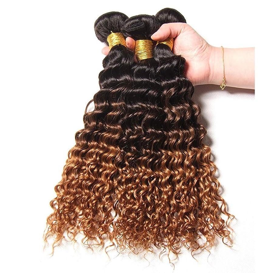ヶ月目親密なエネルギーブラジルの人間の髪の毛の織りの巻き毛の束オンブルの巻き毛の束人間の髪の毛の束深い巻き毛(3束)