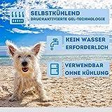 Nosli Kühlmatte Kühldecke Kühlkissen selbstkühlende Decke für Hunde / Sea blue L - 4
