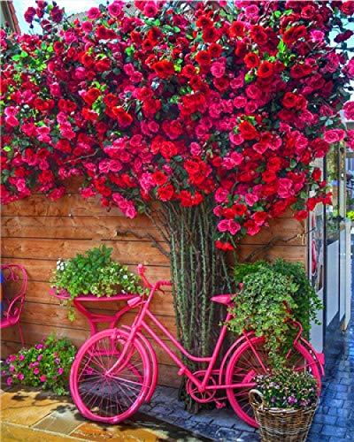 CGZLNL Pintar por Numeros Adultos, Kits de Pintar acrílica Niños DIY, con Pinceles sobre Lienzo Fácil Pinturas Pintura al Óleo Bicicleta de Flores 40 x 50 cm con Marco