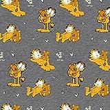 Garfield Katzen Beige Teddy Bär Orange Braun Grau Meliert