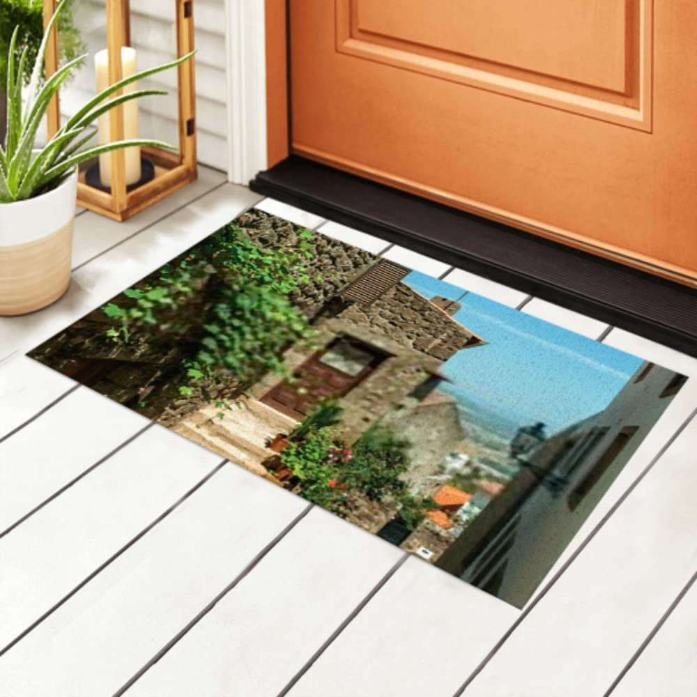 safety Super sale period limited JIUCHUAN Indoor Doormat Facade Old Staircase Houses Flower Stone
