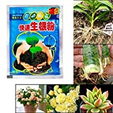 Fishyu 10 Bags Rapid Rooting Powder Agent for Fruit Tree Cutting Flower Plants -