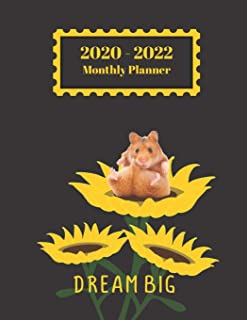 2020-2022 Monthly Planner: Dream Big Hamster Sunflower Inspirational Quote Cover 2 Yr Planner Appointment Calendar Organiz...