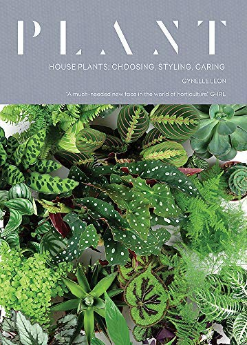 Plant: House plants: choosing, styling, caring (English Edition)