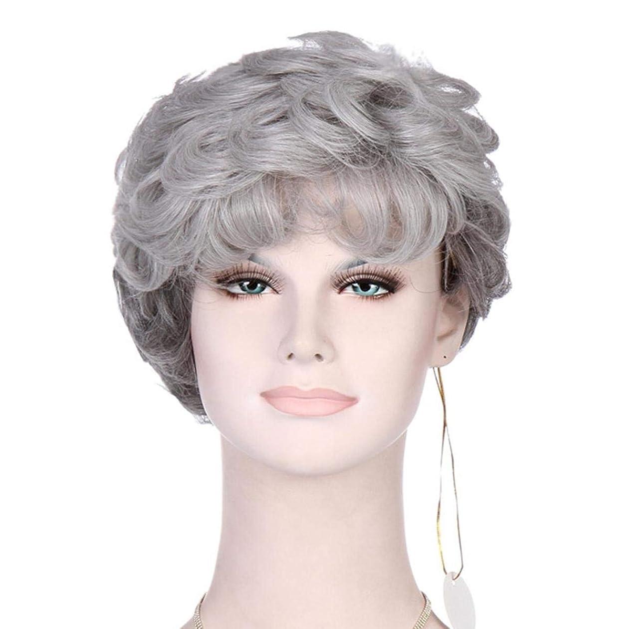 チャーター南極ダイエットかつらシルバーグレー縮毛の短いヘアピース耐熱合成女性老人ウィッグの派手なドレスのための古い女性