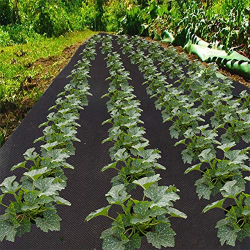 OriginA 2.3Oz Premium Weed Control Fabric Ground Cover Weed Barrier Eco-Friendly for Vegetable Garden Landscape,Non Woven Fabric,4x150ft,Black