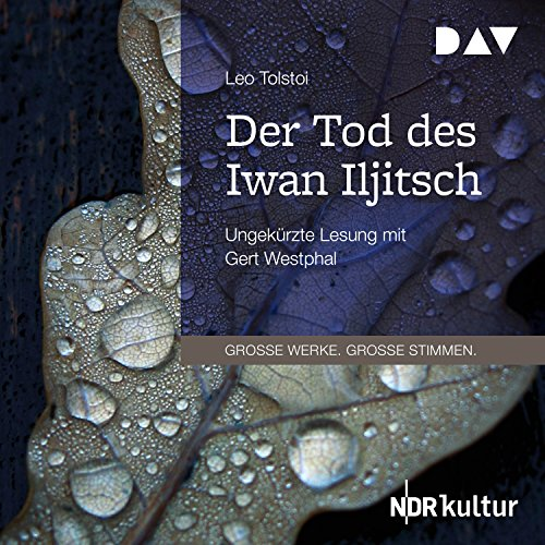 Der Tod des Iwan Iljitsch audiobook cover art