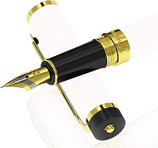 Best gullor fountain pen Reviews