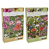 Wildflower Seeds Butterfly Bee Attracting Naturalising Wild Flower Seed Giant Twin Pack
