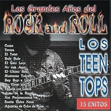 Los Grandes Años del Rock Vol. I