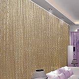 Cortinas hilo con flecos brillantes, puerta colgante para dormitorio,...