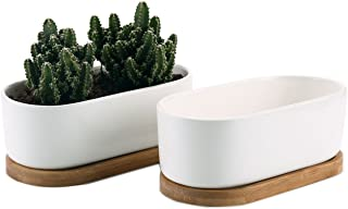 T4U 6.5 Inch Ceramic White Modern Oval Design Succulent Plant Pot/Cactus Plant Pot with Free Bamboo Tray Package 1 Pack of 2