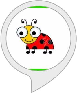 Spell Bug