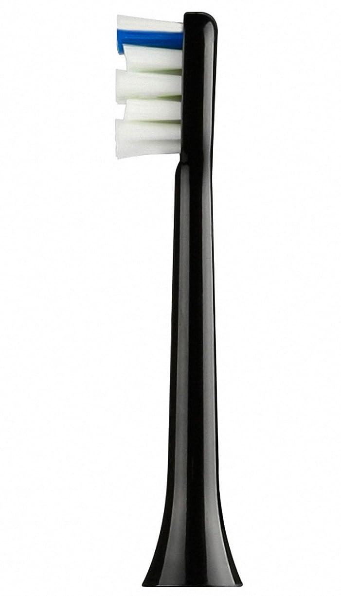 ダイエット馬鹿げた主流音波式電動歯ブラシ(替えブラシ(ブラック)