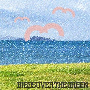 Birds over the Green
