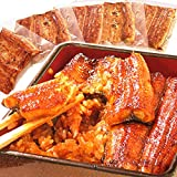 国産うなぎ ギフトランキング入り うなぎ ギフト 鰻(うなぎ)の蒲焼(90~95g)メガ盛り5枚