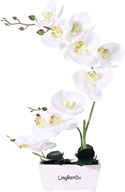 Orchid Plant for Artificial Flowers,White Orchid Arrangement ,Orquidea Artificial Orchid Plant Perfect Packaging 11 Heads 4 C