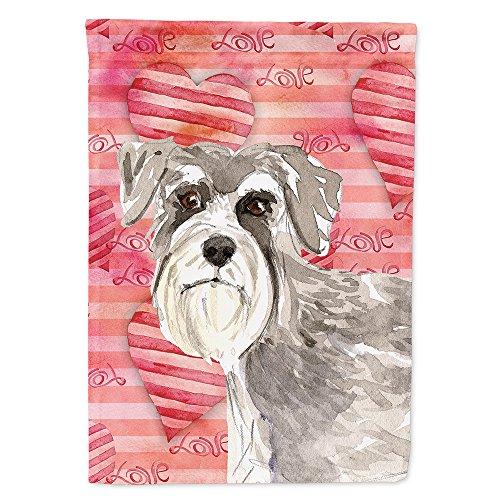 Caroline's Treasures CK1755CHF Love a Schnauzer # 1 Bandera de Lona tamaño Grande, Multicolor