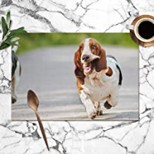 Cute Funny Dogs Basset Hound Running Animals Wildlife Dog Parks Outdoor Table Placemats for Dining Table,Washable Table Mats Heat-Resistant(12X18 Inch) Set of 6