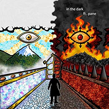 In the Dark (feat. Pane)