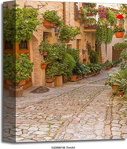 Flower Street in Spello (Umbria, Italy) Gallery Wrapped Canvas Art (14in. x 11in.)