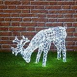 NEFFY SHOP Grasendes Rentier, 200 LEDs kaltweiß, Höhe 50 cm, Weihnachtsfiguren, 3D Led Figuren, Weihnachtsbeleuchtung Außen