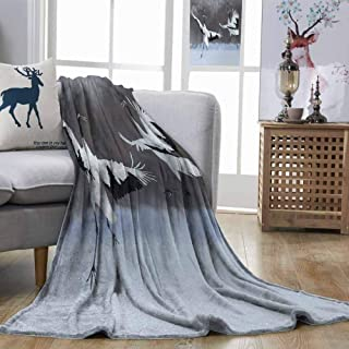 DILITECK Africa Comfortable Blanket Dancing Pair of Red Crowned Crane with Open Wings in Flight Romantic Bird Print Can be Used on Sofa White Black W51 xL60