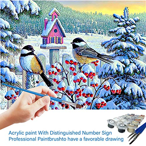 DIY Ölgemälde, Malen nach Zahlen Kit für Erwachsene,Blumen und Vögel Painting Kit für Home Decor 40 * 50 cm Frameless