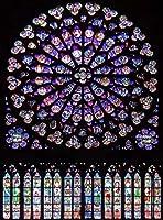 Diyのデジタル油絵子供大人初心者油絵数字キットによる絵画塗り絵 大人手塗り - ノートルダム大聖堂