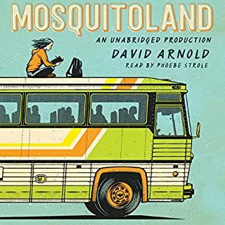 Mosquitoland audiobook cover art