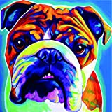 Tianmai Hot New DIY 5d Diamant pintura Kit adornos bordado brillantes pintura collez-le pintura por número kits de punto de Craft Kit Home Decor adhesivo decorativo – Bulldog, multicolor, 30 x 30 cm