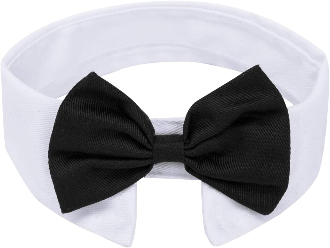 ZTON for Little Puppy Christmas online shopping Formal Topics on TV P Handcrafted Adjustable