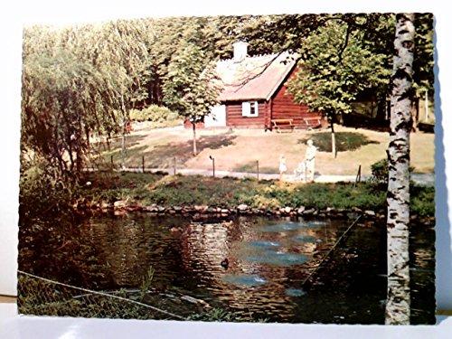 Seltene AK Hässleholm. Hembygdsparken. Seepartie mit Enten, Frau mit Kind und Kinderwagen, Blockhaus, Schweden