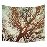 Brandless Misty Forest Mountain Tapestry Sunset Peak Colgante de Pared Cielo Nocturno Tapiz Pared para Dormitorio Sala de Estar Dormitorio