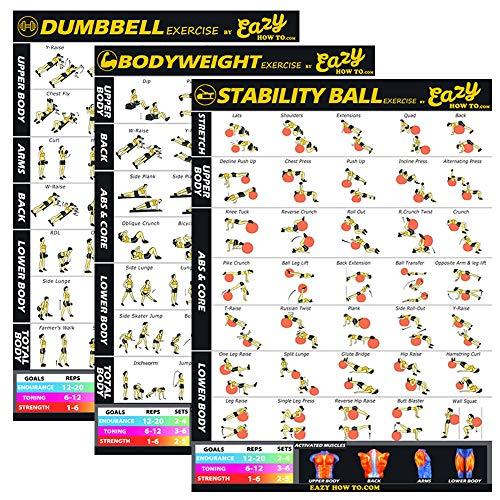 Eazy How To 3 Pack Workout Banner Poster Build Muscle & Lose Fat with Fitness at Home Program with Dumbbells, Stability Ball & Bodyweight Exercises
