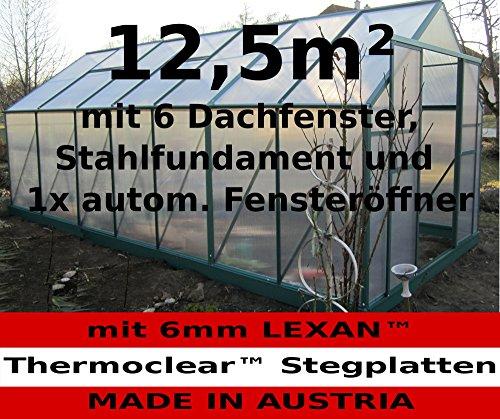 12,5m² PROFI ALU Gewächshaus Glashaus Treibhaus inkl. Stahlfundament u. 6 Fenster, mit 6mm Hohlkammerstegplatten - (Platten MADE IN AUSTRIA/EU) inkl. 1 autom. Fensteröffner von AS-S