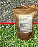 GoodGrow Hard Wearing Grass Seed