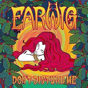 Don't Disturb Me (The official Korean language theme song)