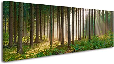 Forest Wall Art for Living Room, SZ Panoramic Spring Morning Sunrise Picture Canvas Prints, Fantastic Decor of Sunshine Peeking Through Rainforest (1