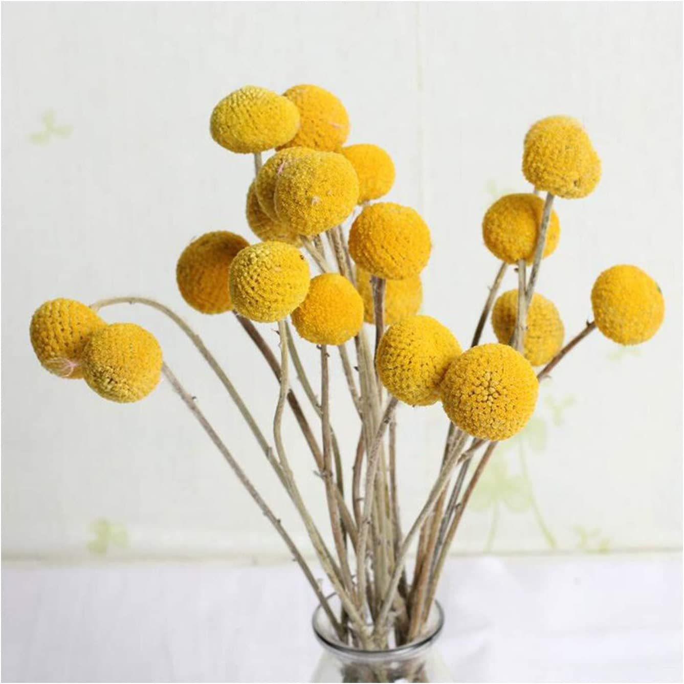 30Pcs Golden Houston Mall Ball Dried Ranking TOP4 Flowers ,Dried Balls,Artificia Billy