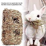 Kaninchen Gras Haus Alles natürliche handgewebte Gras Tunnel Haus, das Spielzeug für Kleintiere Hamster Meerschweinchen Häschen kaut