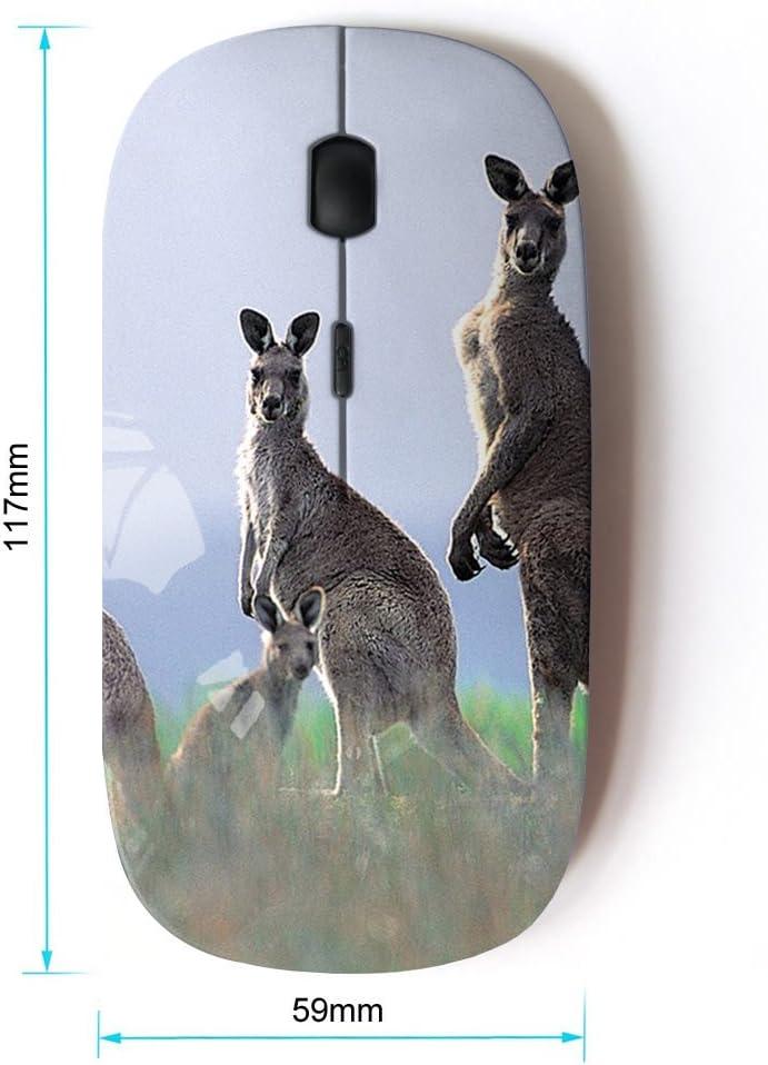 STPlus Kangaroo Animal 2.4 GHz Wireless Mouse with Ergonomic Design and Nano Receiver
