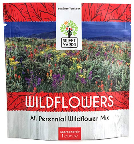 Perennial Wildflower Seeds Mixture - Bulk 1 Ounce Packet - Over 15,000 Pure Live Seed - Open Pollinated and Non GMO