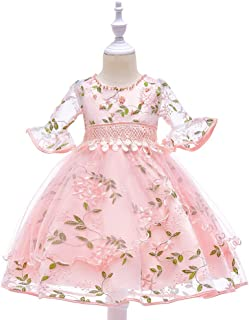Vestido de princesa de las niñas De los niños vestidos de manga larga bordadas fl vestido de la princesa vestidos de las n...